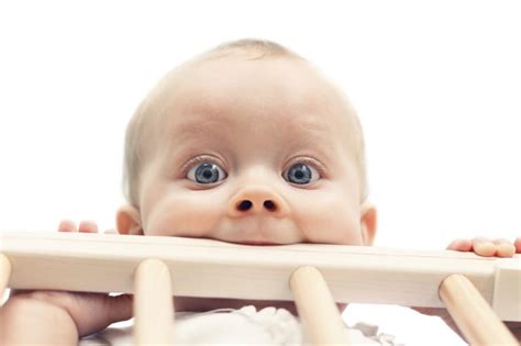 Baby Chewing On Crib What Are The Causes Of Children Chewing On Cribs Livestrong
