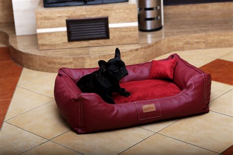 Sofa Bed Jogja 100 foam bed pet support systems washable or dogs sofa beds pet beds on groupon