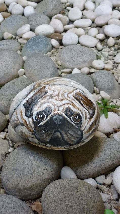rock pug 17 best ideas about paints on painting designs butterfly