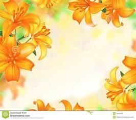lily flowers border design stock photo image 39552766