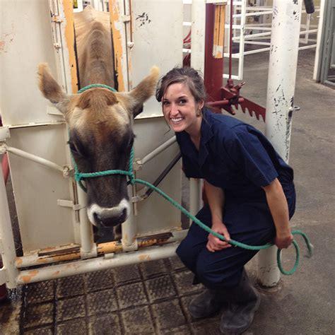 Colorado State Veterinary School Dvm Mba by Animals The Environment Colorado School Of