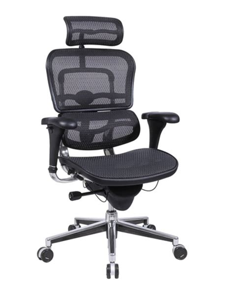 Comfortable Office Chair by Eurotech Ergohuman Me7erg Mesh Executive Chair With Headrest