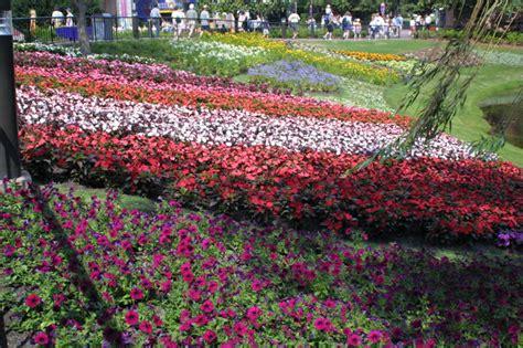 garden photos flower garden 2