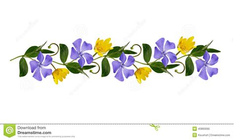 Line Flower periwinkle flowers line stock image image of arrangement