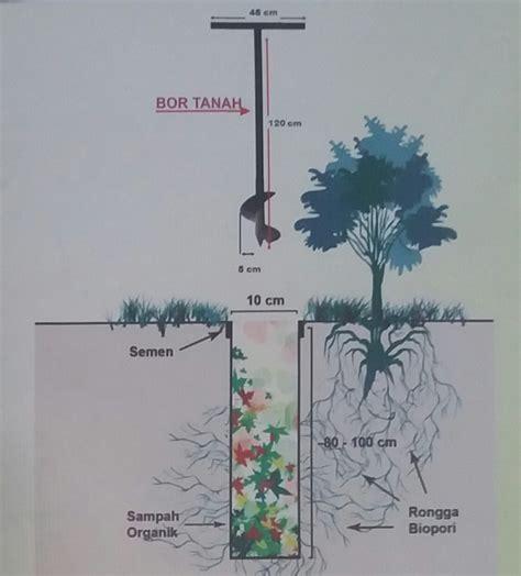 Air Mancur Jarak 50 Cm cara membuat biopori di halaman rumah 1001 cara menanam 1001 cara menanam