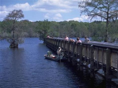 Bayou Chicot Cabins by A Walk In The Park State Park Spotlight Louisiana State Park Spotlight