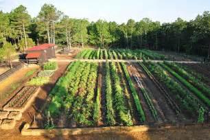 1 acre farm layout