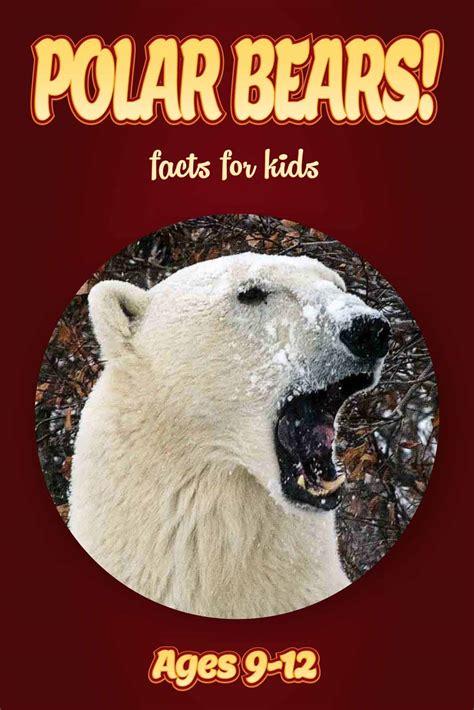 non fiction picture books polar facts for nonfiction book