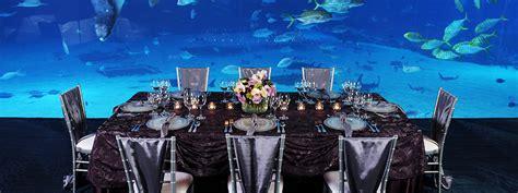 Large Dining Room Ideas Mesmerizing Special Events Visit Georgia Aquarium