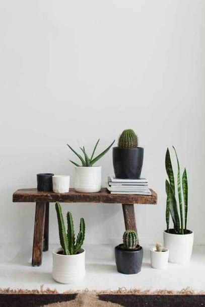 Home Interior Photography Home Accessory Plants Succulents Cactus Terrarium Pot White Black Brown Stool Table
