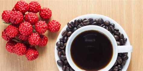 kopi rasa buah pertama di indonesia merdeka