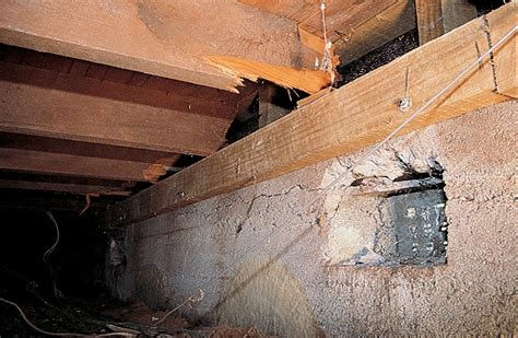 how to remove moisture from wood floors rotting basement
