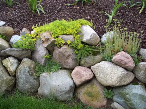 rock garden walls 1000 ideas about rock wall gardens on wall
