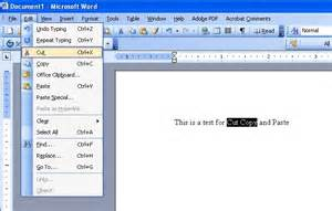 Ms Word Editor Microsoft Word 2003 Information And Technology