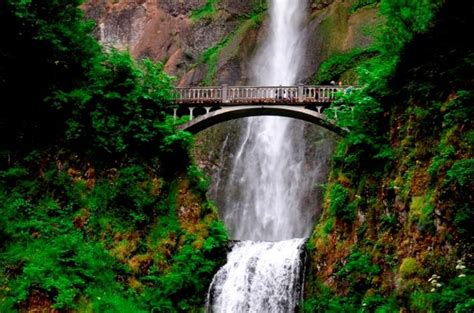 columbia river waterfalls near portland columbia river gorge waterfalls tour from portland viator