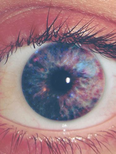 imagenes de ojos hipster galaxy cupcake gif tumblr