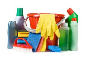 home items common household cleaners that could poison your pets pet naturals blog