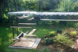 catio on cat enclosure and image