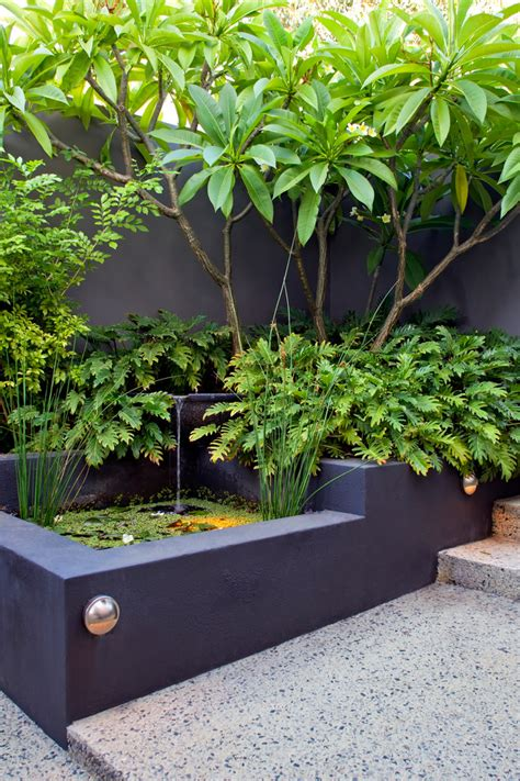 melville courtyards tropical landscape perth