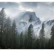Mist Nature Landscape Yosemite National Park Trees