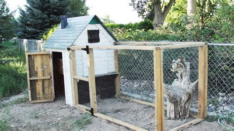 how to build a building how to build a pallet chicken coop 20 diy plans guide