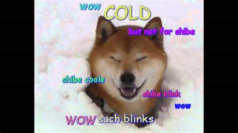 Youtube Doge Meme - cold doge meme youtube