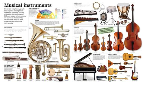 picturepedia dk publishing 9781465438287 books
