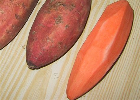 carbohydrates 100g cooked pasta sweet potato 183 frozen 183 cooked 183 baked 100 calories