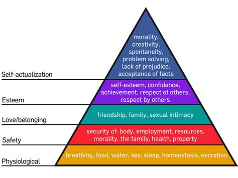 maslow s pyramid of human needs put to the test the