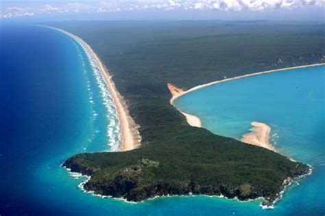 Tropical Desert Plants - australia great sandy national park physical geography of global parks
