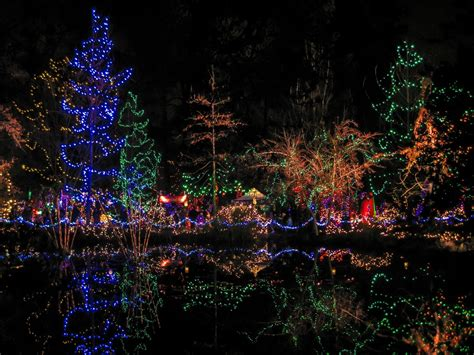 Festival Of Lights At Vandusen Botanical Garden In Vancouver On Two Wheels Bikabout