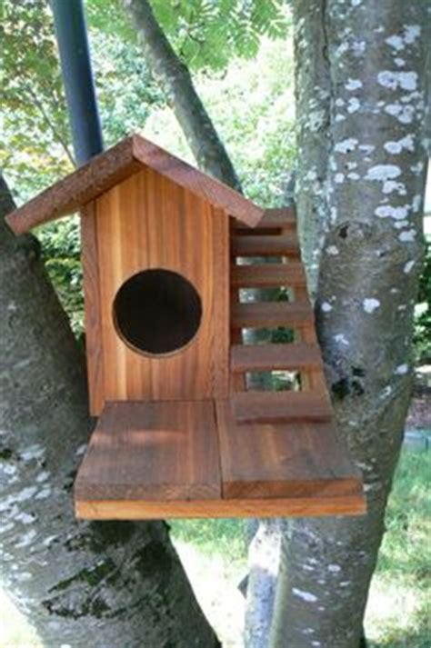 1000+ images about squirrel house on pinterest | squirrel