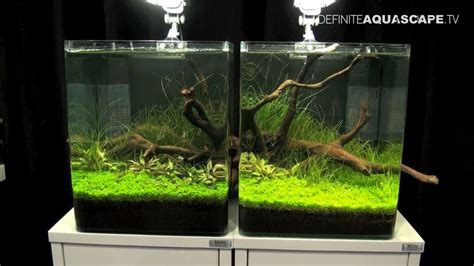 How To Make An Aquascape by Aquascaping The Of The Planted Aquarium 2013 Nano Pt