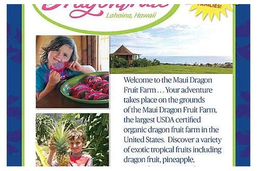 maui coupon book