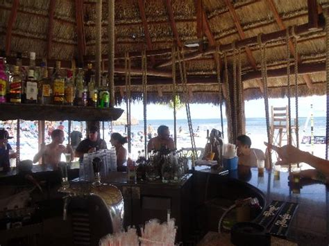 playa del carmen bar with swings beach swing bar picture of bluebay grand esmeralda
