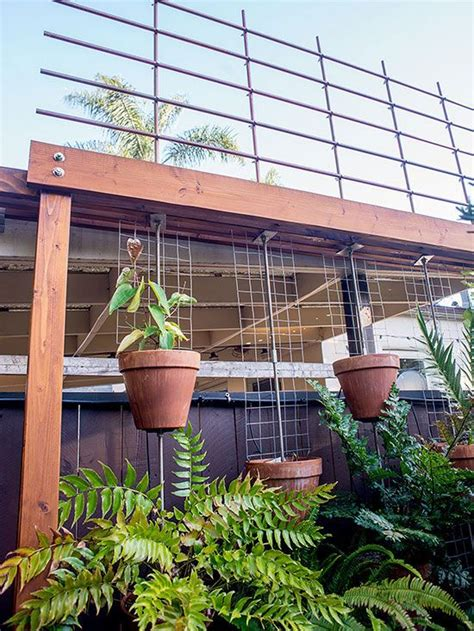 Free Standing Trellis Screen 65 Best Images About Trellis On Planters