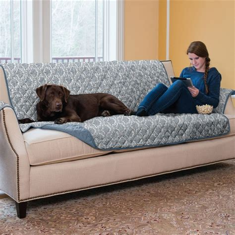 protect sofa from dogs protect sofa from pets okaycreations net