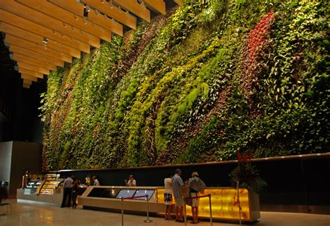 Singapore Vertical Garden Vertical Garden Asia Green Buildings