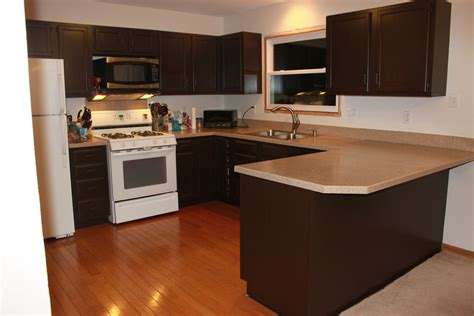 Kitchen Cabinet Furniture by Painting Kitchen Cabinets Sometimes