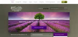best home websites website design woodland ca