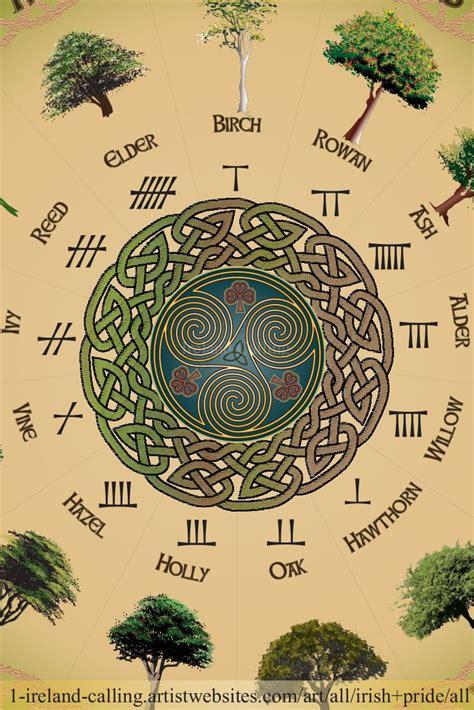 Celtic Tree Calendar Beautiful Ogham Calendar Print Showing The 13 Months Of