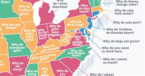 most googled question most googled why do questions by state shown on map