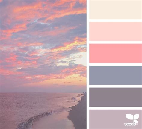 color combination with white color set instagram color inspiration and color pallets