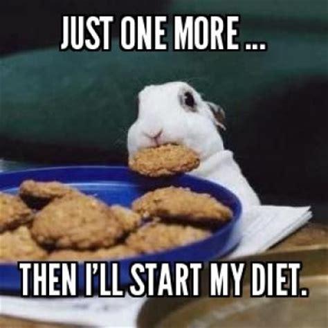 Dieting Meme - diet meme google search random crack ups pinterest