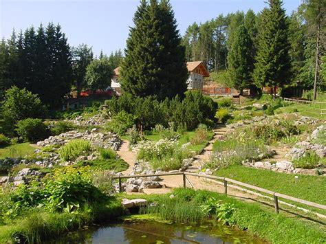 giardino botanico estate tra fiori e stelle alle viote monte bondone