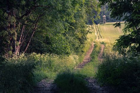 The Way To Paradise the way to paradise 2 by on deviantart