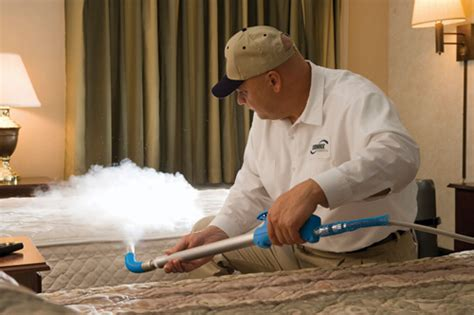 can you freeze bed bugs rapid freeze bed bug control in kentwood terminix west