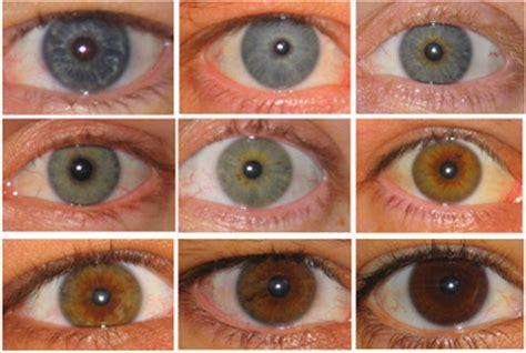 all possible eye colors yann klimentidis weblog oca2 and eye color