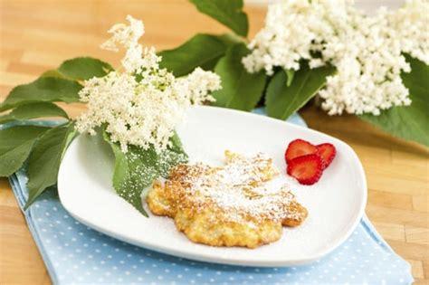 fiori di sambuco ricette ricetta frittelle fiori sambuco i fiori in tavola non