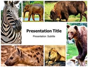Powerpoint Templates Animals by Forest Animals Ppt Powerpoint Templates Powerpoint